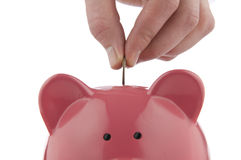 Piggy Bank Series Stock Photo