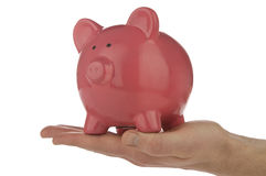 Piggy Bank Series Royalty Free Stock Photography