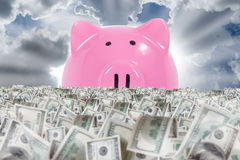 Piggy Bank Shining Behind Banknote Farm. Big piggy bank shining behind dollar banknotes farm on cloudy sky background Royalty Free Stock Image