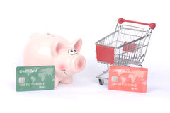 Piggy bank and shopping Stock Images