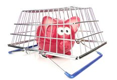 Piggy Bank and Shopping Basket Stock Photos