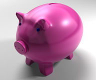 Piggy Bank Shows Savings Accounts Royalty Free Stock Image