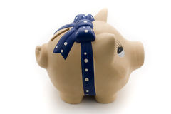 Piggy bank side view. Ceramic piggy bank isolated on white background Stock Photography
