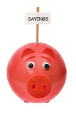Piggy Bank with Sign Board Royalty Free Stock Images