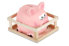 Piggy bank in small wooden corral Royalty Free Stock Images