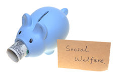 Piggy bank for social welfare. Concept photo isolated on white background royalty free stock photography