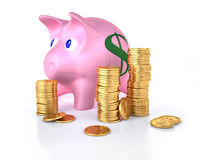 Piggy bank with some gold coins stacks around. Royalty Free Stock Images