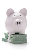 Piggy bank on stacks of money Stock Image