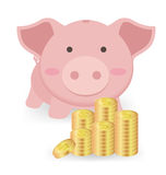 Piggy Bank And Stacks of Money Coins  On White Backgroun Stock Images