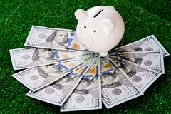 Piggy bank stand over US dollar banknote. Money savings concept. Copy space save coin pile rich finance business investment cash currency wealth financial stock images