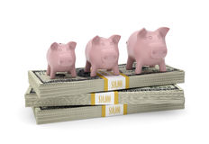 Piggy bank stand on pack of dollars Royalty Free Stock Images