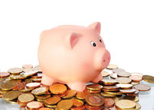 Piggy bank is standing in a area from Euro Coins Royalty Free Stock Photo