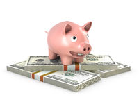 Piggy bank stands on 100 dollar papers Royalty Free Stock Photos