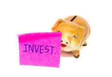 Piggy bank with stick Royalty Free Stock Photos