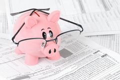 Piggy Bank Studies Tax Forms Royalty Free Stock Image