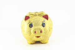 Piggy bank style money box. Isolated on a white studio background stock images