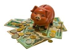 Piggy bank style money box Stock Photography