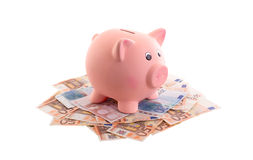 Piggy bank surrounded by Euro notes Royalty Free Stock Photos
