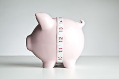 Piggy bank and tape measure Stock Photography