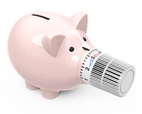 Piggy bank with thermostat nose Stock Photography
