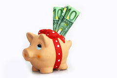 A piggy bank with three $ 100 bills Royalty Free Stock Image
