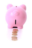 Piggy bank trail Stock Image