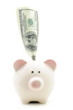 Piggy bank with US bill Royalty Free Stock Image