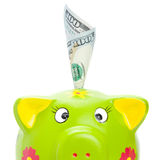 Piggy bank with 100 US dollars in it Stock Images