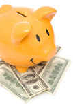 Piggy bank with usd Stock Photo