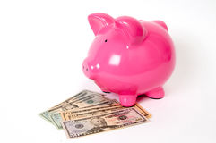 Piggy bank with USD notes Royalty Free Stock Photos