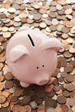 Piggy bank and vast amount of coins Stock Photography