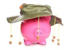 Piggy bank wearing an Australian cork hat. Studio cutout Royalty Free Stock Photos