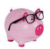Piggy bank wearing black spectacle glasses Stock Images