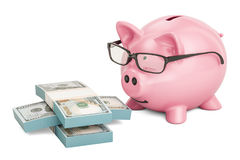 Piggy bank wearing eyeglasses with dollar packs, 3D rendering Stock Photography