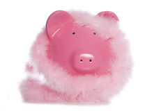Piggy bank wearing fluffy garland Stock Photos