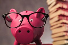 Piggy bank wearing glasses and faces the camera Stock Photo