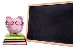 Piggy bank wearing glasses, small blank blackboard, isolated, college education concept Stock Images