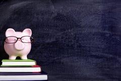 Piggy bank wearing glasses, student college graduate success concept Stock Images