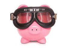 Piggy bank wearing googles Stock Images