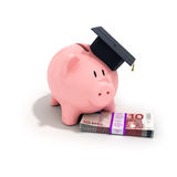 A piggy bank wearing a graduation cap Stock Image