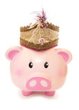 Piggy bank wearing indian prince hat Stock Image