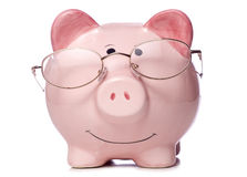 Piggy bank wearing reading glasses Stock Images