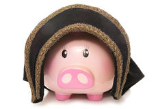 Piggy bank wearing a tudor hat. Cutout Royalty Free Stock Photo