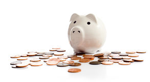 Piggy Bank on White. A piggy bank on a white background surrounded by American pennies Stock Photos