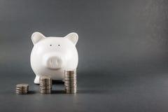 Piggy bank 009 Stock Photos