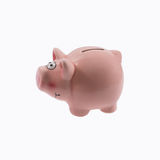 Piggy bank . Stock Photos