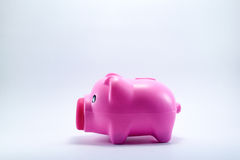 Piggy bank. On white background Royalty Free Stock Image