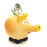 Piggy bank on white background close up Stock Photos