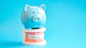 Piggy bank with White teeth model on blue background. tax offset concept. Medical Expense Deductions and Tax Breaks