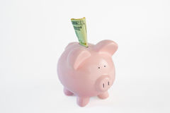 Free Piggy Bank With Twenty Dollar Bill Royalty Free Stock Image - 98460906